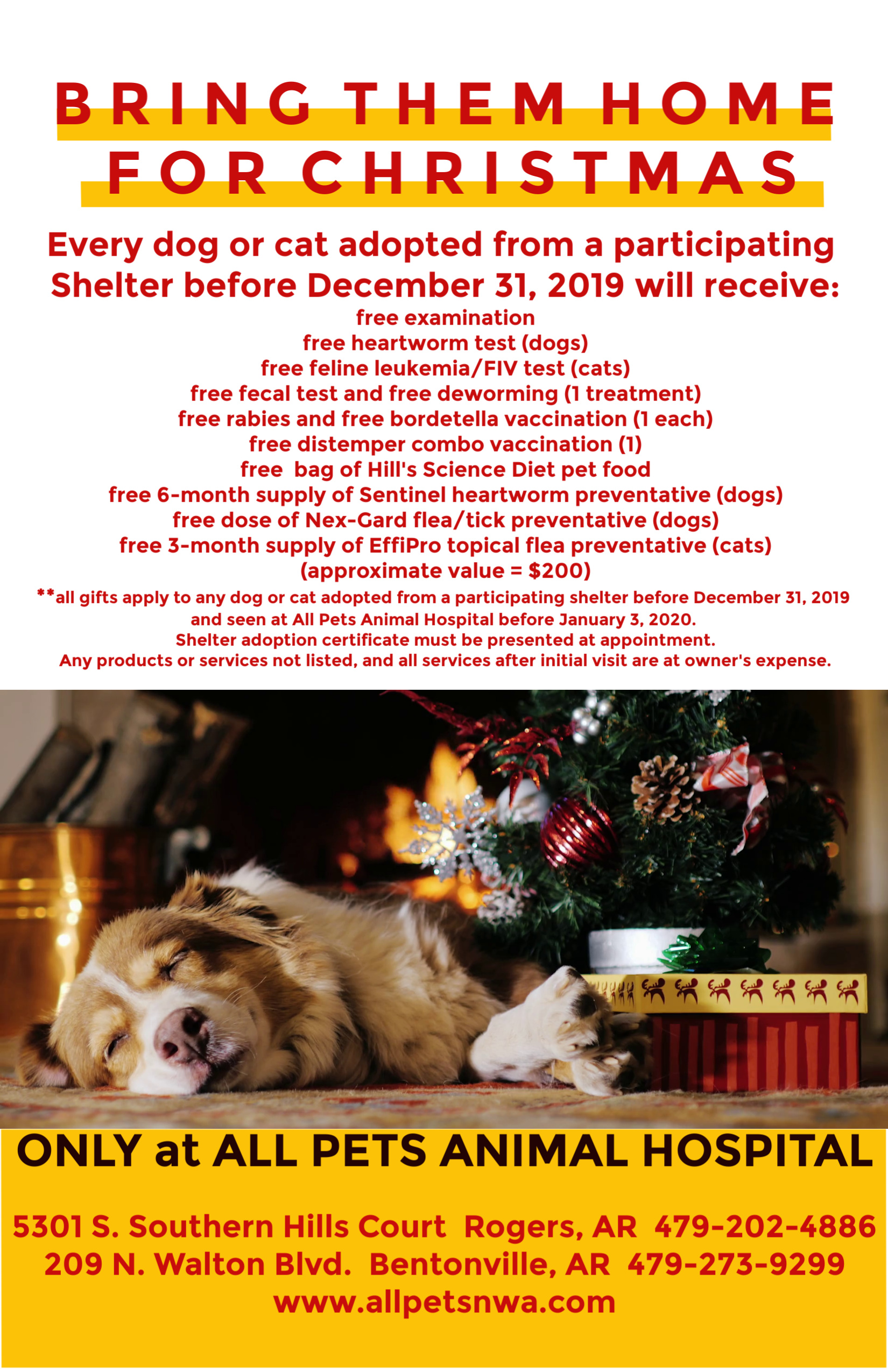2019Bring Them Home for Christmas Back PRESS RELEASE copy